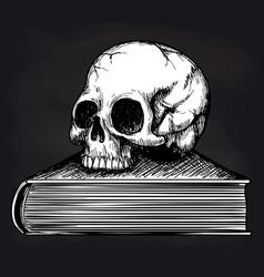 skull on book sketch on blackboard vector image