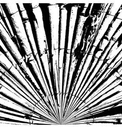 Bamboo Texture Abstract vector image