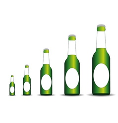 Five bottles of the different size vector image