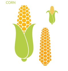 Corn Set vector image