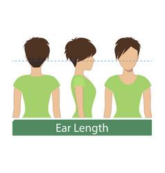 Ear length hair length vector