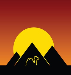 camel and pyramids color in night vector image