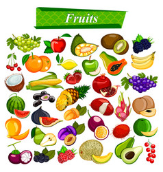 Fresh and nutritious fruit set including apple vector