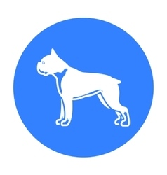 Boxer dog icon in black style for web vector image