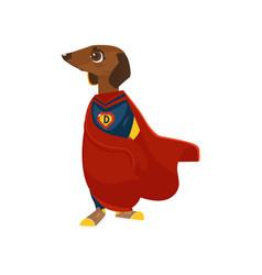 Cartoon superman costume dog character vector