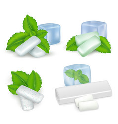 realistic mint chewing gum icon set vector image