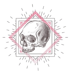 Skull with geometric abstract elements Hand Drawn vector image vector image