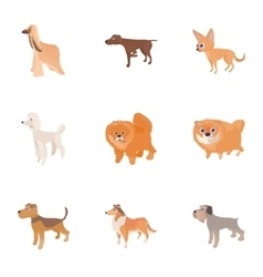 Types of dogs icons set cartoon style vector