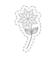 star anice flower decoration cut line vector image
