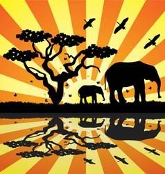 elephants birds and butterflies in africa vector image