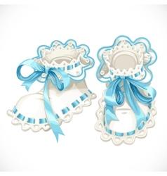 Blue booties for newborn vector image vector image