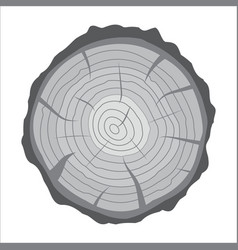 cross section of tree stump or trunk wood cut vector image vector image