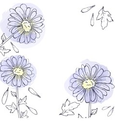 daisy flowers floral set of ink drawing vector image vector image