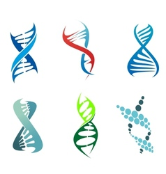 DNA and molecules vector image
