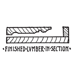 Finished lumber in section material symbol relate vector
