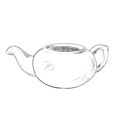 sketch of teapot vector image vector image