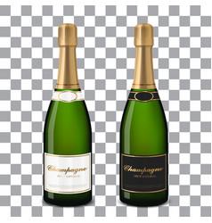 champagne bottles vector image