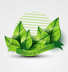 natural green vector image