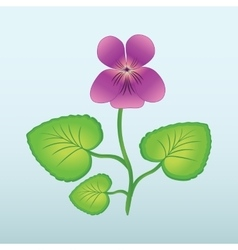 Spring flower viola violet floral icon yellow vector