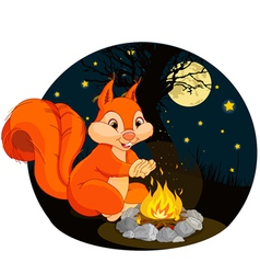 Squirrel campfire vector image