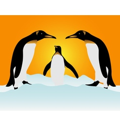 The penguins vector image