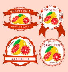 The red grapefruit vector