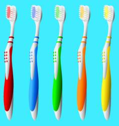 Set of colorful toothbrushes vector