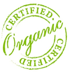 Green organic certified stamp vector