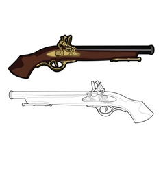 antique musket vector image vector image