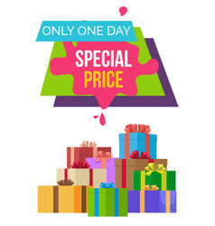 special price only 1 day exclusive product quality vector image vector image