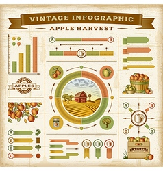 Vintage apple harvest infographic set vector