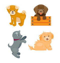 cute playing dogs characters vector image vector image