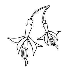 Flower petal natural thin line vector