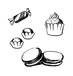 Sketch of cupcake macaron truffles and candy vector image