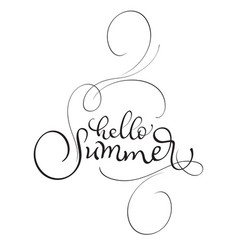 hello summer text on white background vector image vector image