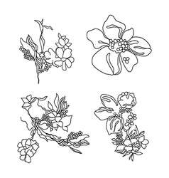 Lace flowers set vector