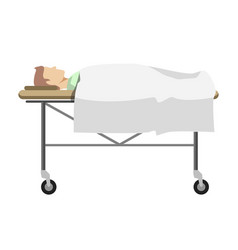 Male person lying on medical table with wheels vector