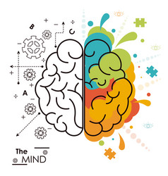 Mind brain human functions left right design vector