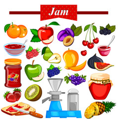 different variety of fruit jam and jelly vector image