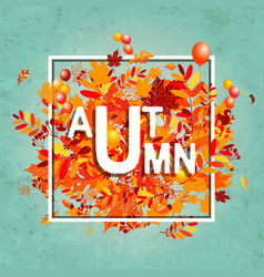 autumn foliage banner for your design vector image vector image