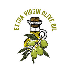 olive oil label template extra virgin olive oil vector image