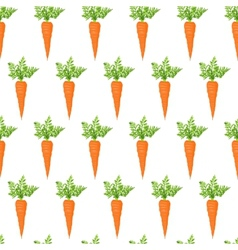 Fresh carrot vector