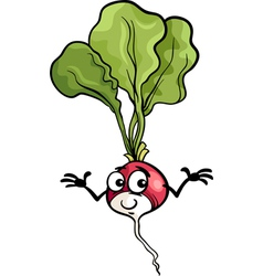 cute radish vegetable cartoon vector image