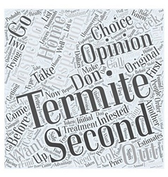 Termite Inspection Second Opinion Word Cloud vector image vector image