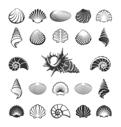 Sea shell silhouettes vector