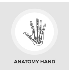 Anatomy hand flat icon vector