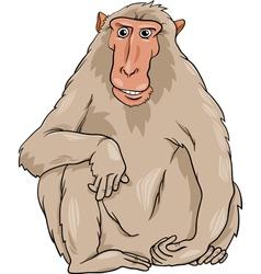 macaquee animal cartoon vector image vector image