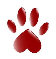 The Paw vector image vector image