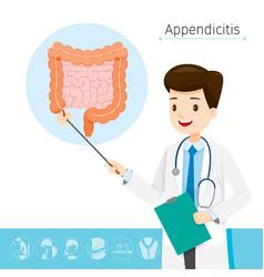 Doctor describes about cause to appendicitis vector