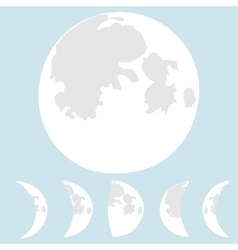 Moon  phases moon vector